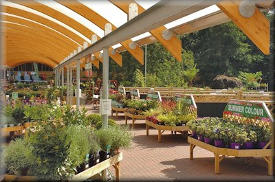 Ten Merchandising Lessons for Garden Centres
